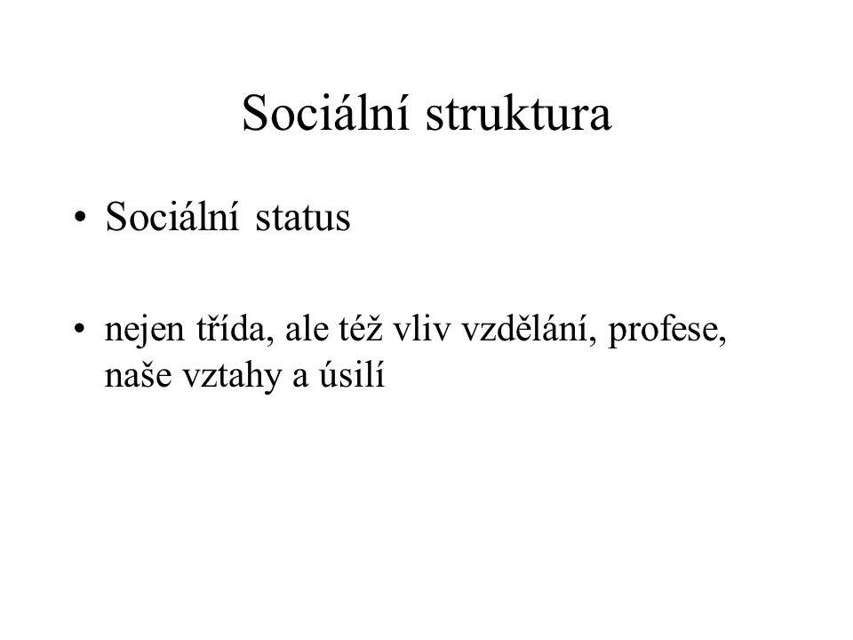 Sociální struktura Sociální status