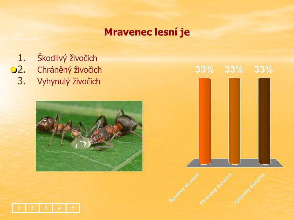 Mravenec lesní je Škodlivý živočich Chráněný živočich