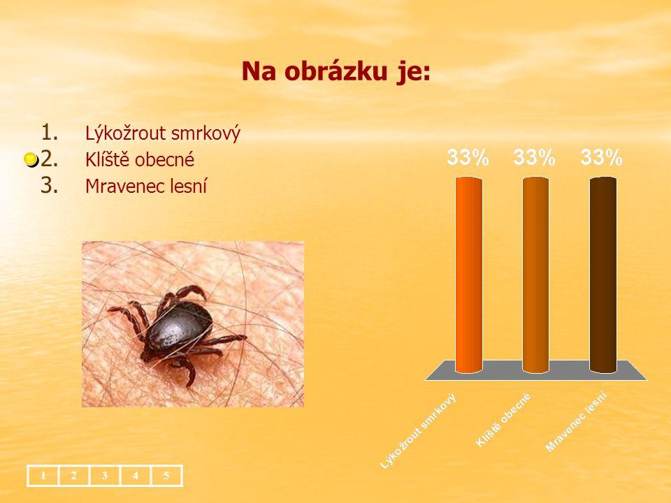 Na obrázku je: Lýkožrout smrkový Klíště obecné Mravenec lesní 1 2 3 4