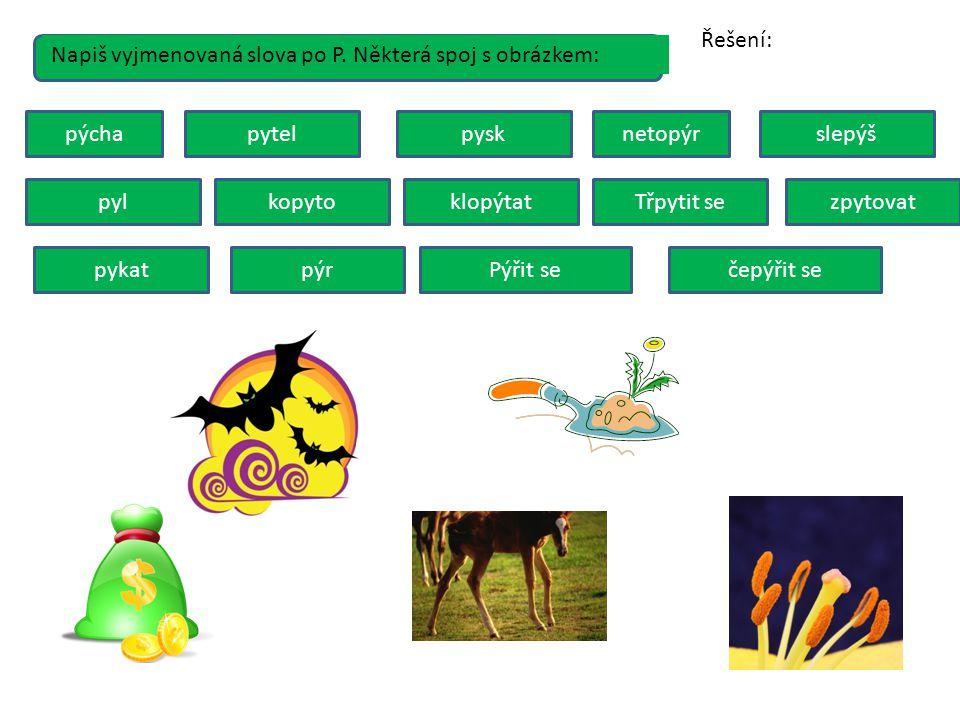 Řešení: Napiš vyjmenovaná slova po P. Některá spoj s obrázkem: pýcha. pytel. pysk. netopýr. slepýš.