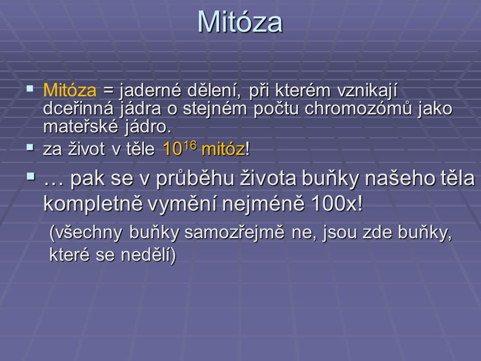 Mitóza Mitóza = jaderné dělení, při kterém vznikají dceřinná jádra o stejném počtu chromozómů jako mateřské jádro.