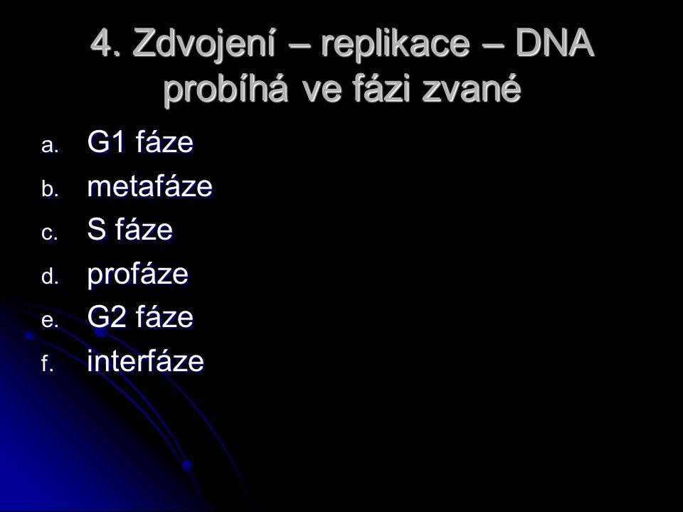 4. Zdvojení – replikace – DNA probíhá ve fázi zvané