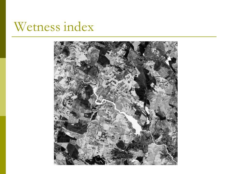 Wetness index