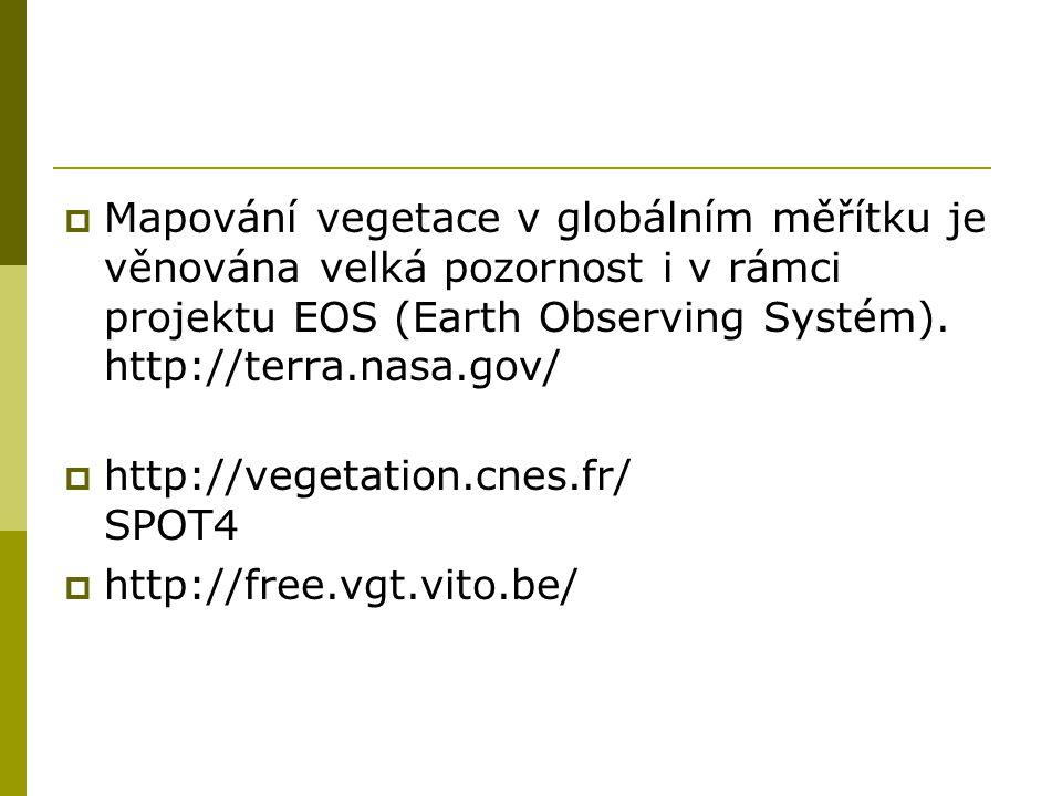 Mapování vegetace v globálním měřítku je věnována velká pozornost i v rámci projektu EOS (Earth Observing Systém). http://terra.nasa.gov/