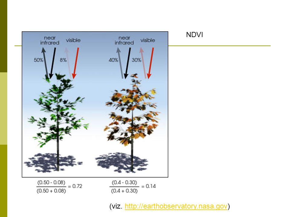 NDVI (viz. http://earthobservatory.nasa.gov)