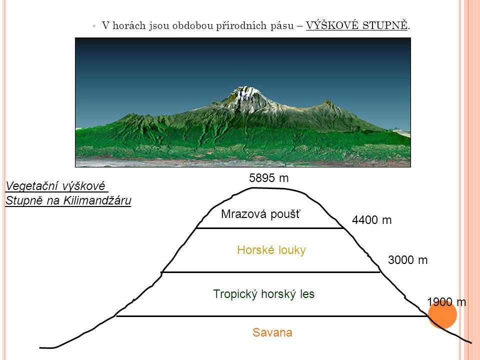 Stupně na Kilimandžáru
