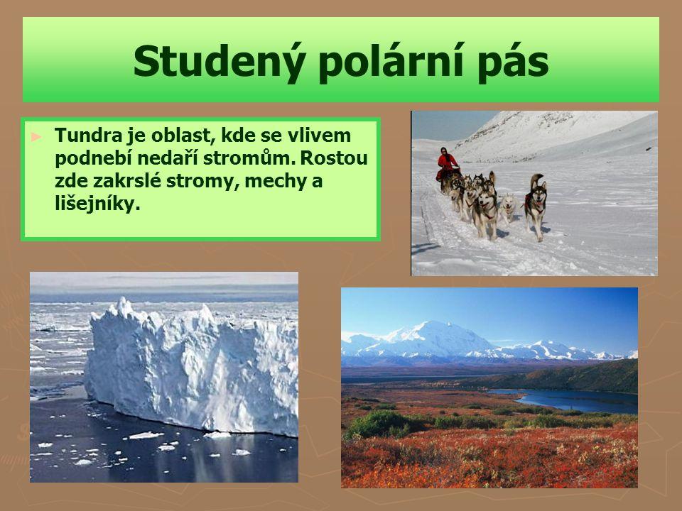Studený polární pás Tundra je oblast, kde se vlivem podnebí nedaří stromům.