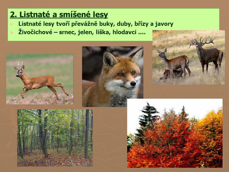 2. Listnaté a smíšené lesy
