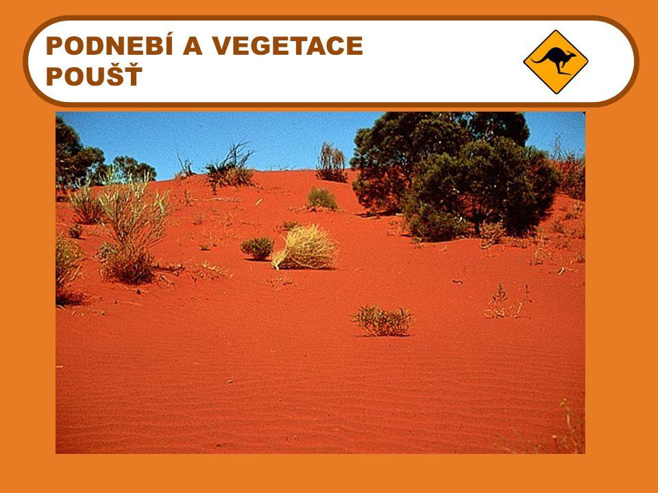 PODNEBÍ A VEGETACE POUŠŤ Gibsonova poušť