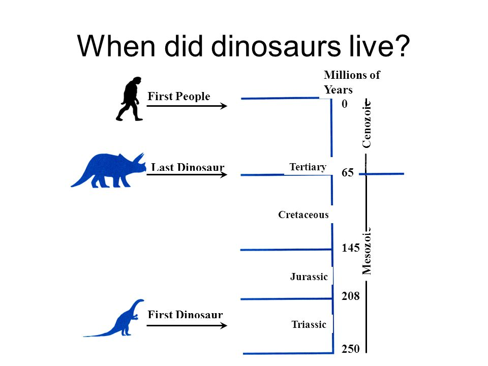 When did dinosaurs live
