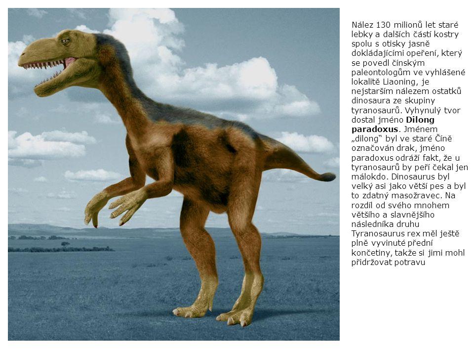 Nález 130 milionů let staré lebky a dalších částí kostry spolu s otisky jasně dokládajícími opeření, který se povedl čínským paleontologům ve vyhlášené lokalitě Liaoning, je nejstarším nálezem ostatků dinosaura ze skupiny tyranosaurů.