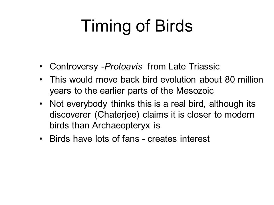 Timing of Birds Controversy -Protoavis from Late Triassic