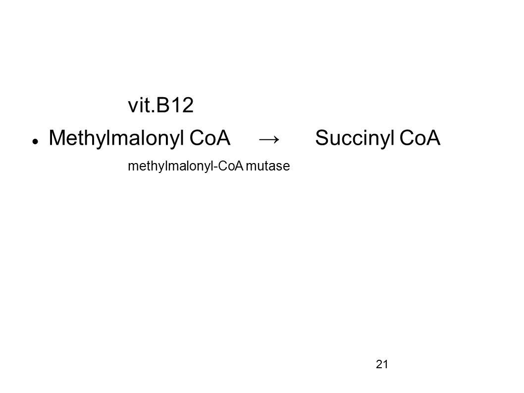 Methylmalonyl CoA → Succinyl CoA