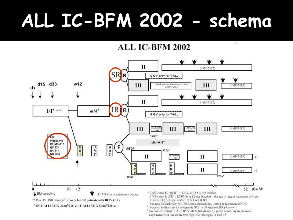ALL IC-BFM 2002 - schema