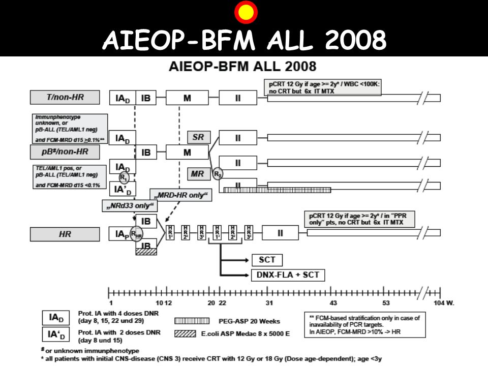 AIEOP-BFM ALL 2008