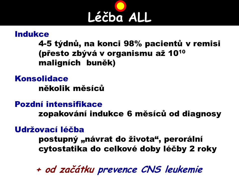 + od začátku prevence CNS leukemie