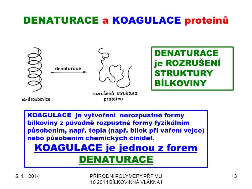Denaturace a koagulace proteinů