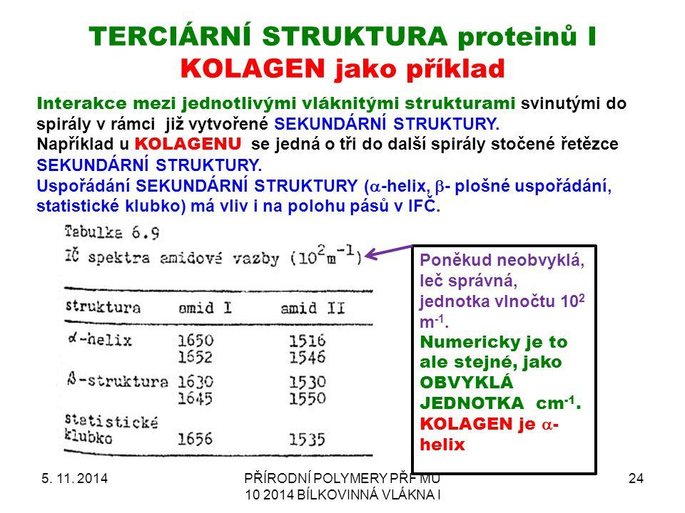 TERCIÁRNÍ STRUKTURA proteinů I KOLAGEN jako příklad