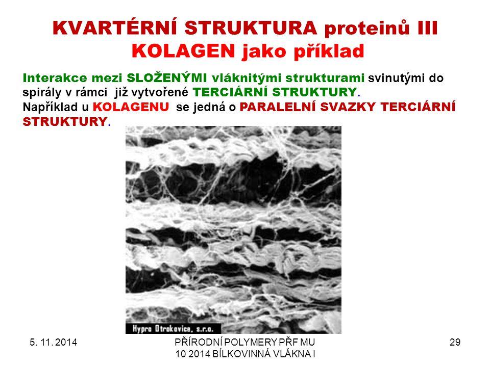 KVARTÉRNÍ STRUKTURA proteinů III KOLAGEN jako příklad