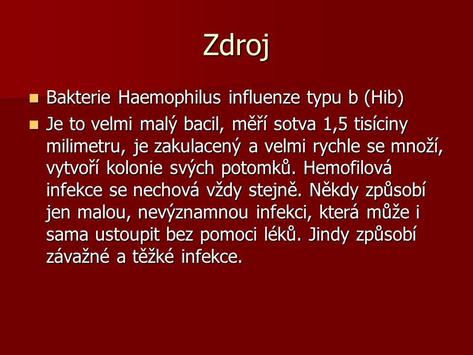Zdroj Bakterie Haemophilus influenze typu b (Hib)