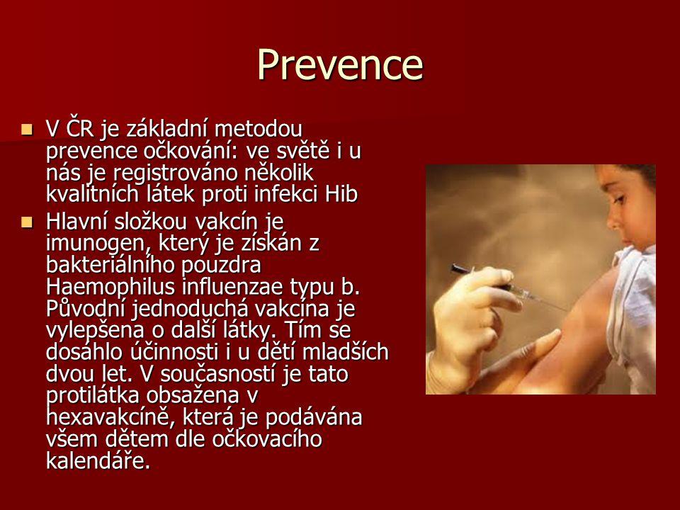 Prevence V ČR je základní metodou prevence očkování: ve světě i u nás je registrováno několik kvalitních látek proti infekci Hib.