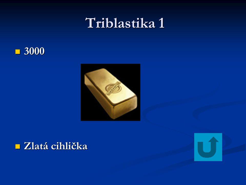 Triblastika 1 3000 Zlatá cihlička