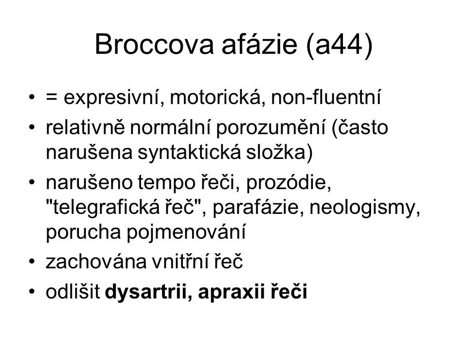 Broccova afázie (a44) = expresivní, motorická, non-fluentní
