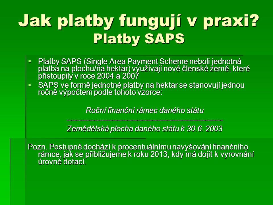 Jak platby fungují v praxi Platby SAPS