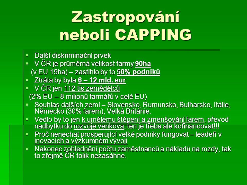 Zastropování neboli CAPPING