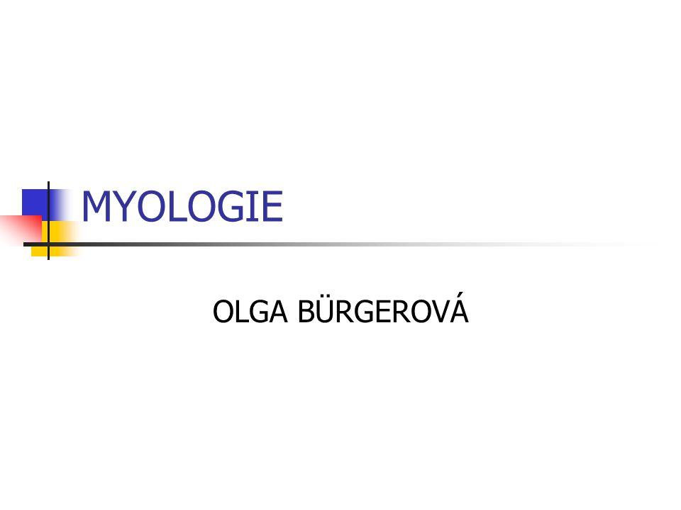 MYOLOGIE OLGA BÜRGEROVÁ