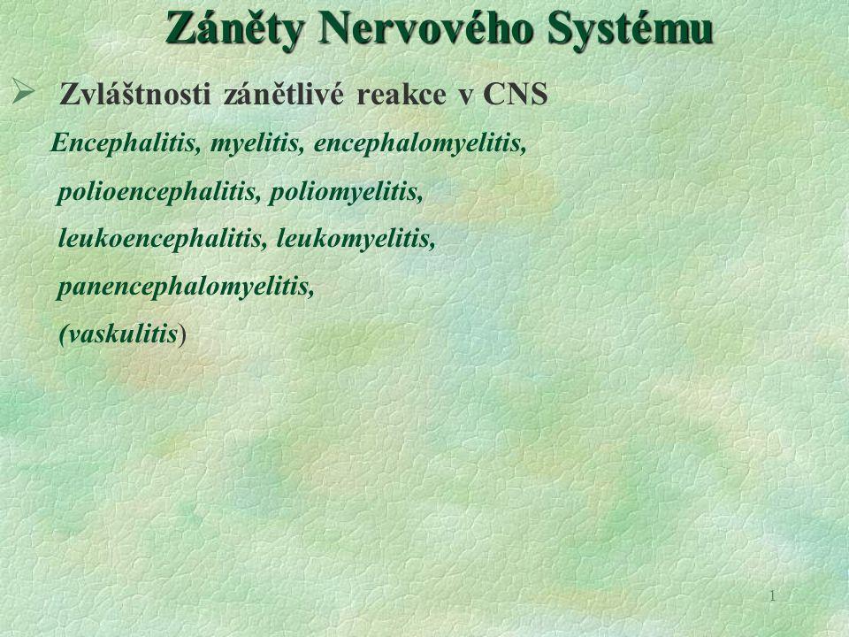 Záněty Nervového Systému