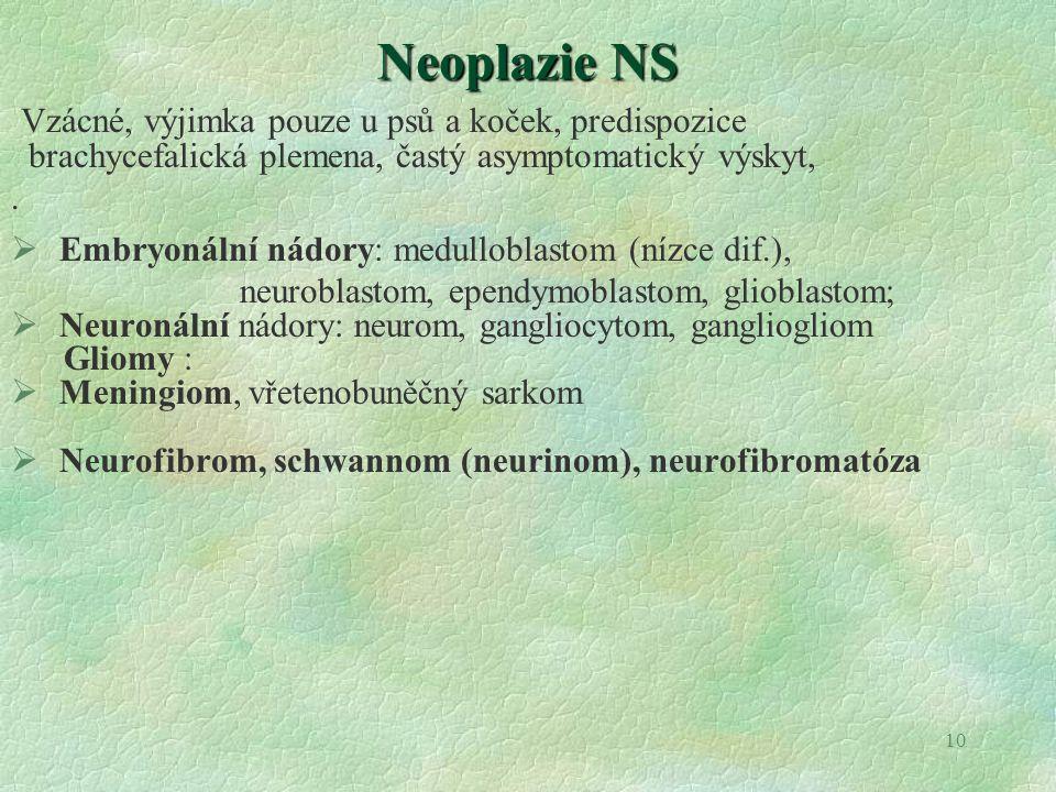 Neoplazie NS Vzácné, výjimka pouze u psů a koček, predispozice