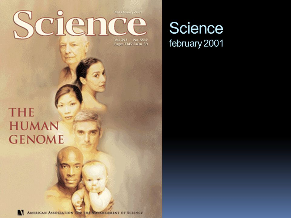 Science february 2001
