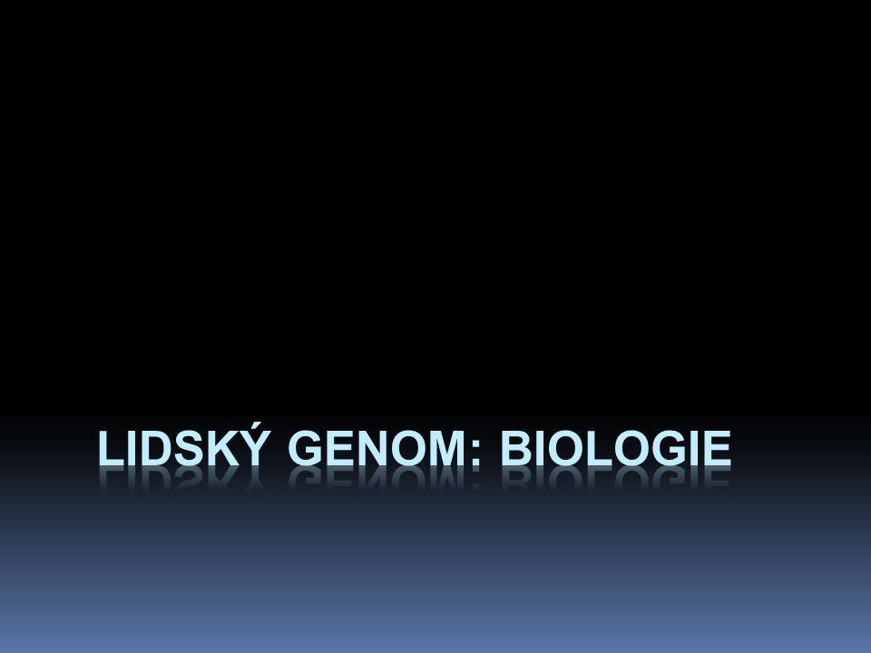 lidský genom: biologie