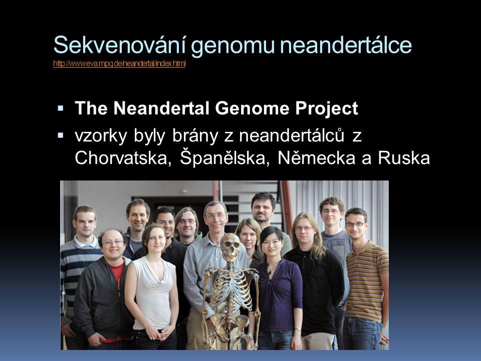 Sekvenování genomu neandertálce http://www. eva. mpg