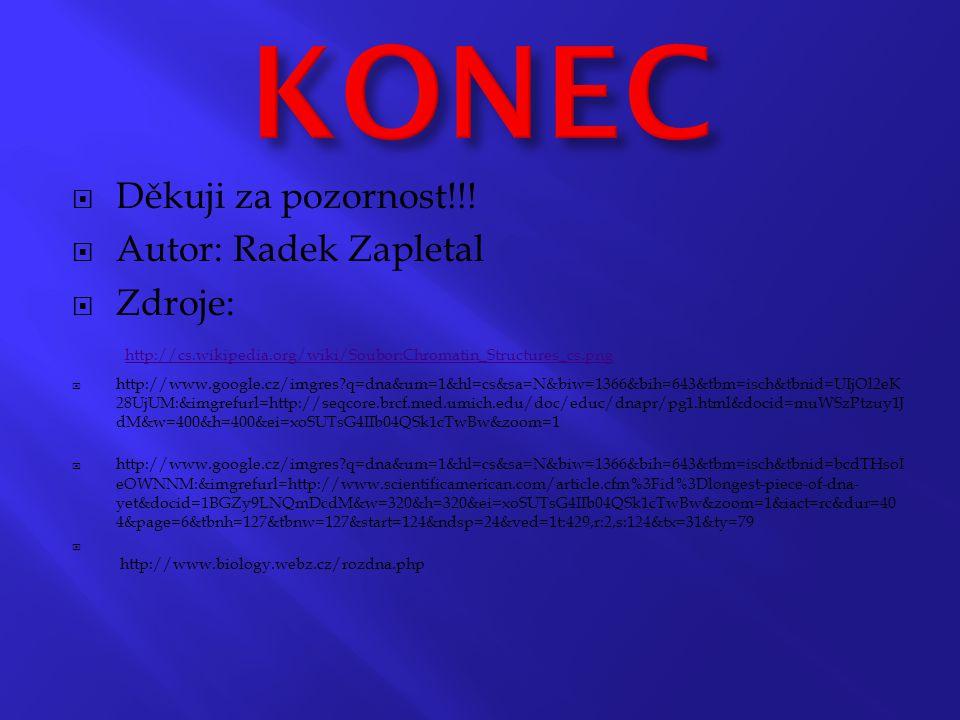 KONEC Děkuji za pozornost!!! Autor: Radek Zapletal
