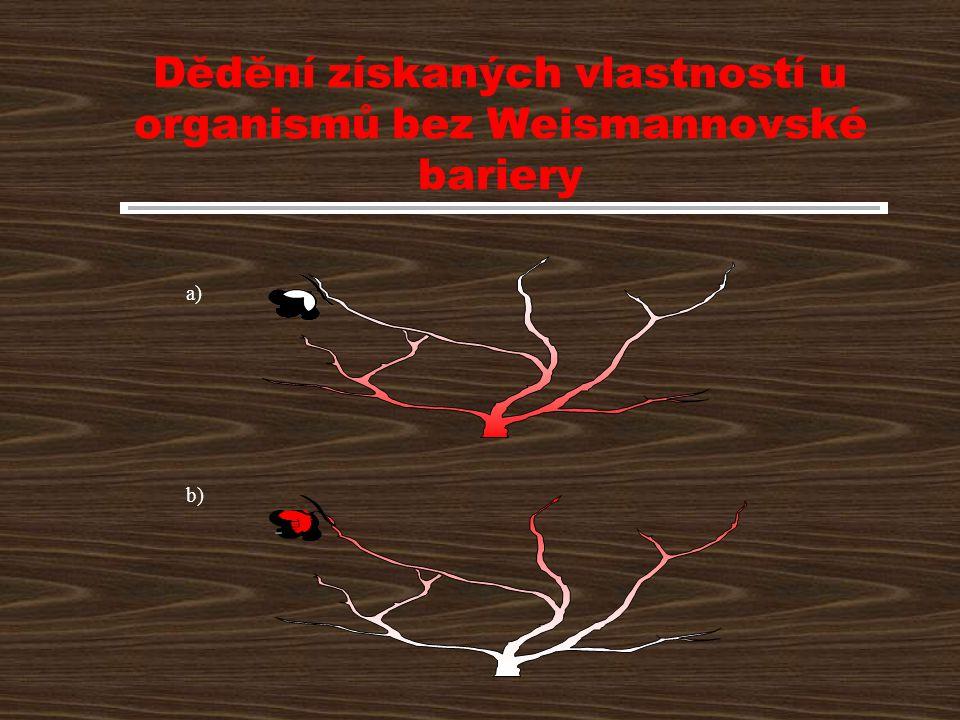 Dědění získaných vlastností u organismů bez Weismannovské bariery