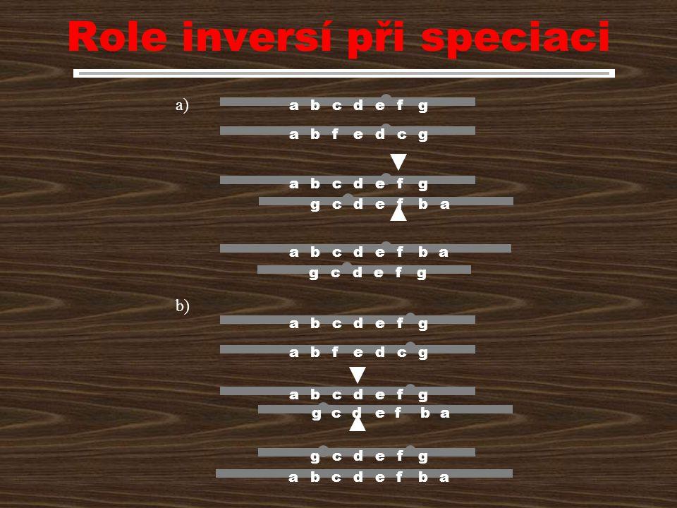 Role inversí při speciaci