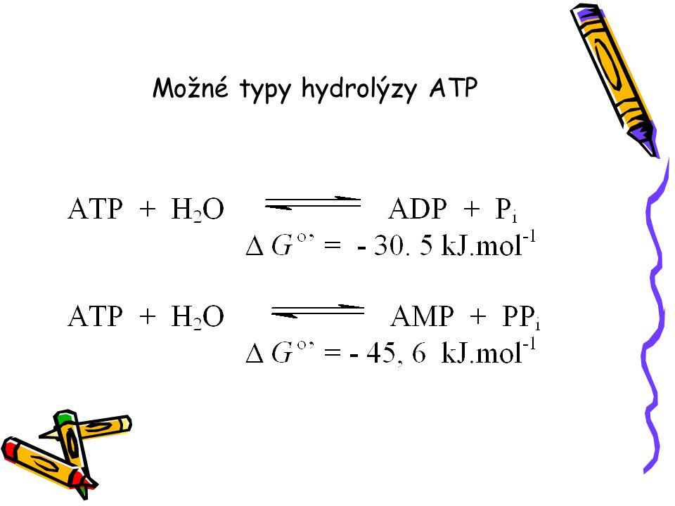 Možné typy hydrolýzy ATP