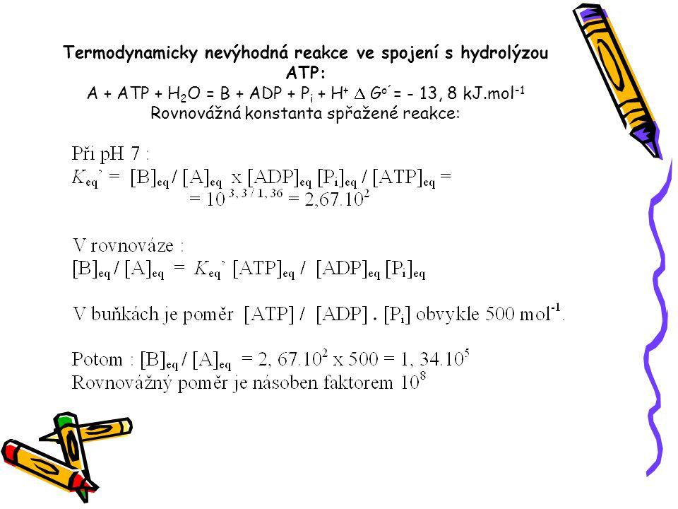 Termodynamicky nevýhodná reakce ve spojení s hydrolýzou ATP: A + ATP + H2O = B + ADP + Pi + H+ D Go´= - 13, 8 kJ.mol-1 Rovnovážná konstanta spřažené reakce: