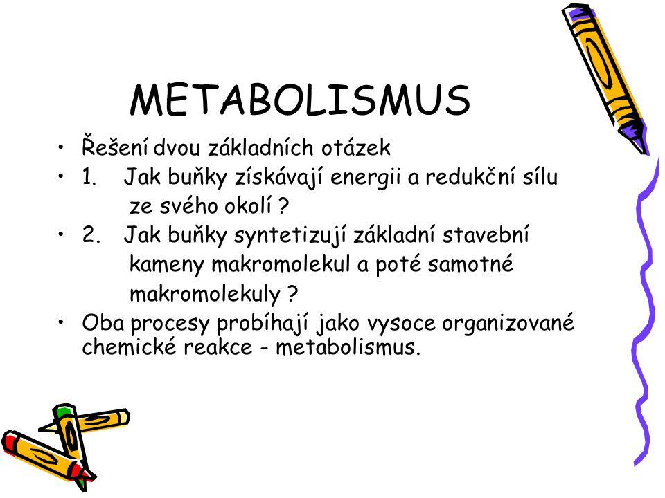 METABOLISMUS Řešení dvou základních otázek