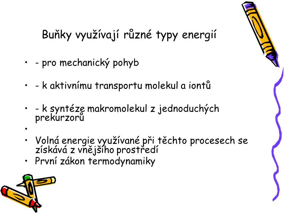 Buňky využívají různé typy energií