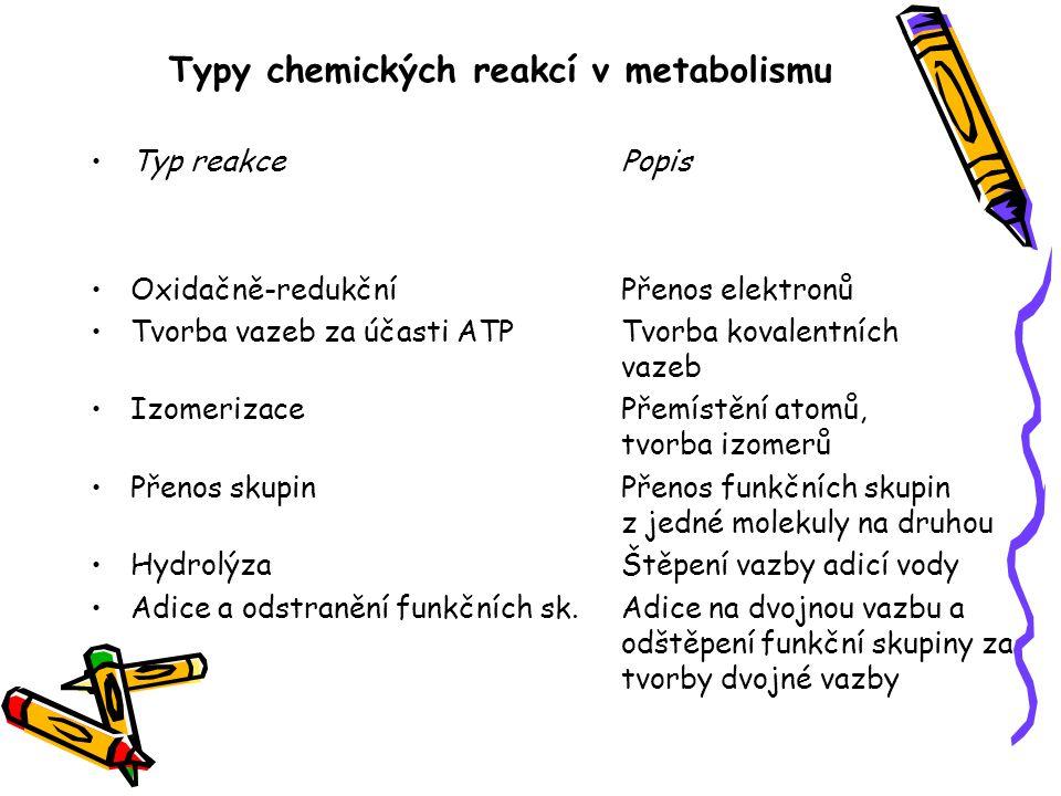 Typy chemických reakcí v metabolismu