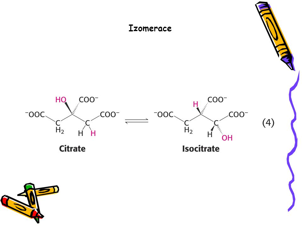 Izomerace
