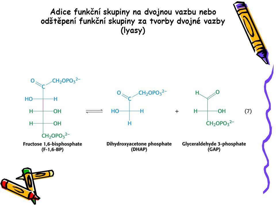 Adice funkční skupiny na dvojnou vazbu nebo odštěpení funkční skupiny za tvorby dvojné vazby (lyasy)