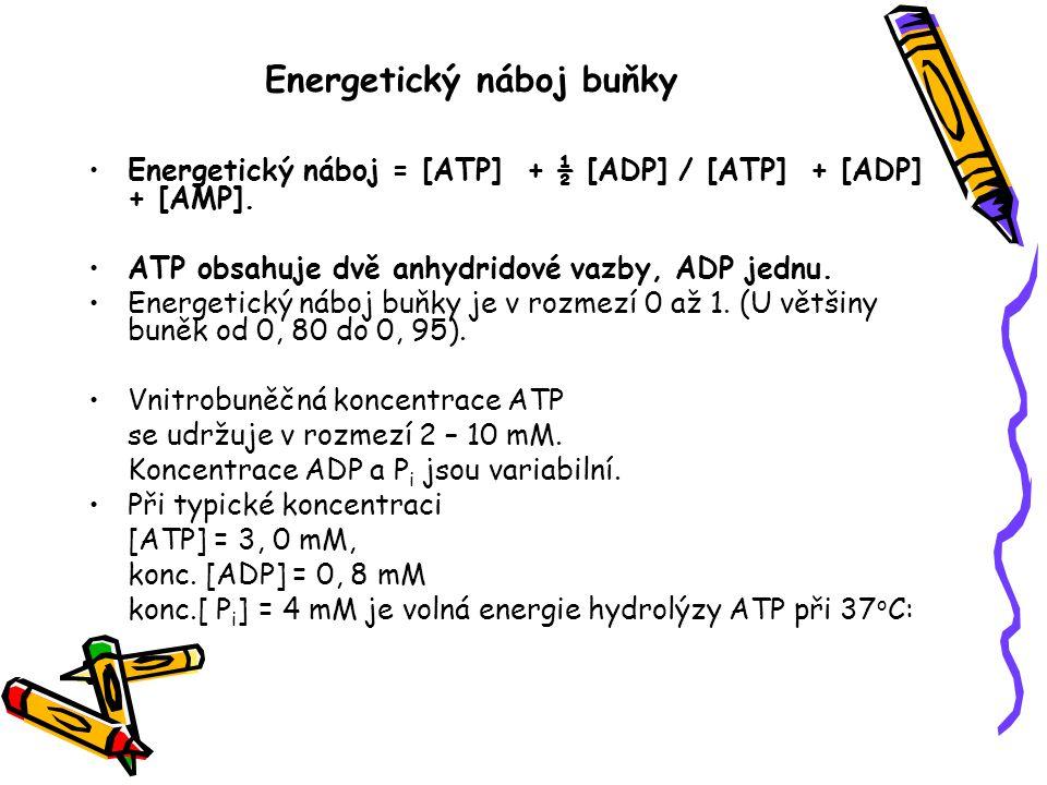 Energetický náboj buňky