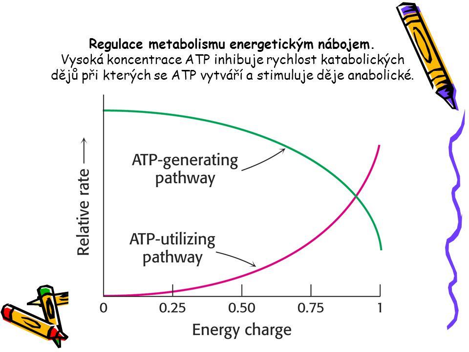 Regulace metabolismu energetickým nábojem