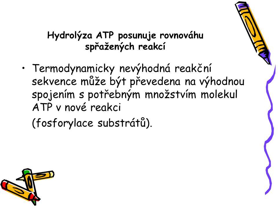 Hydrolýza ATP posunuje rovnováhu spřažených reakcí