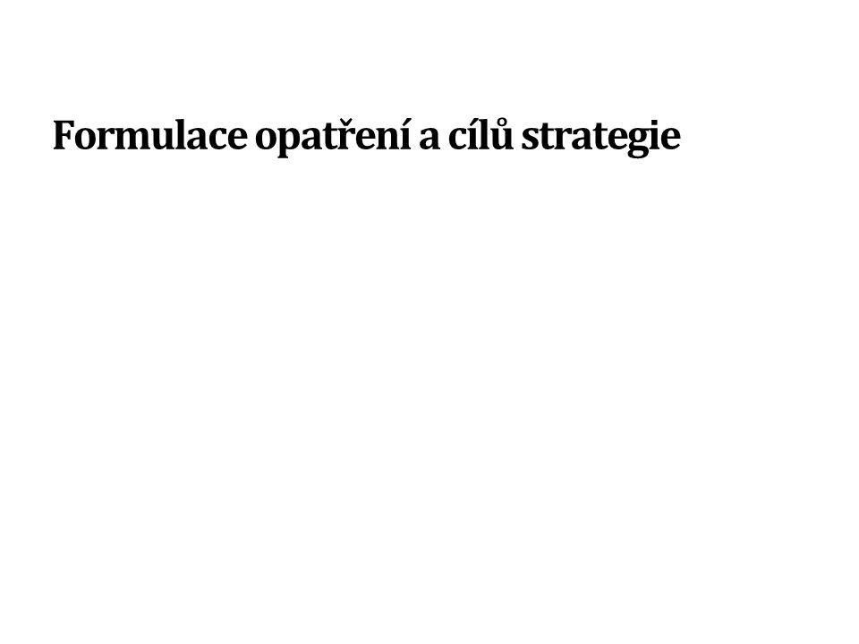 Formulace opatření a cílů strategie