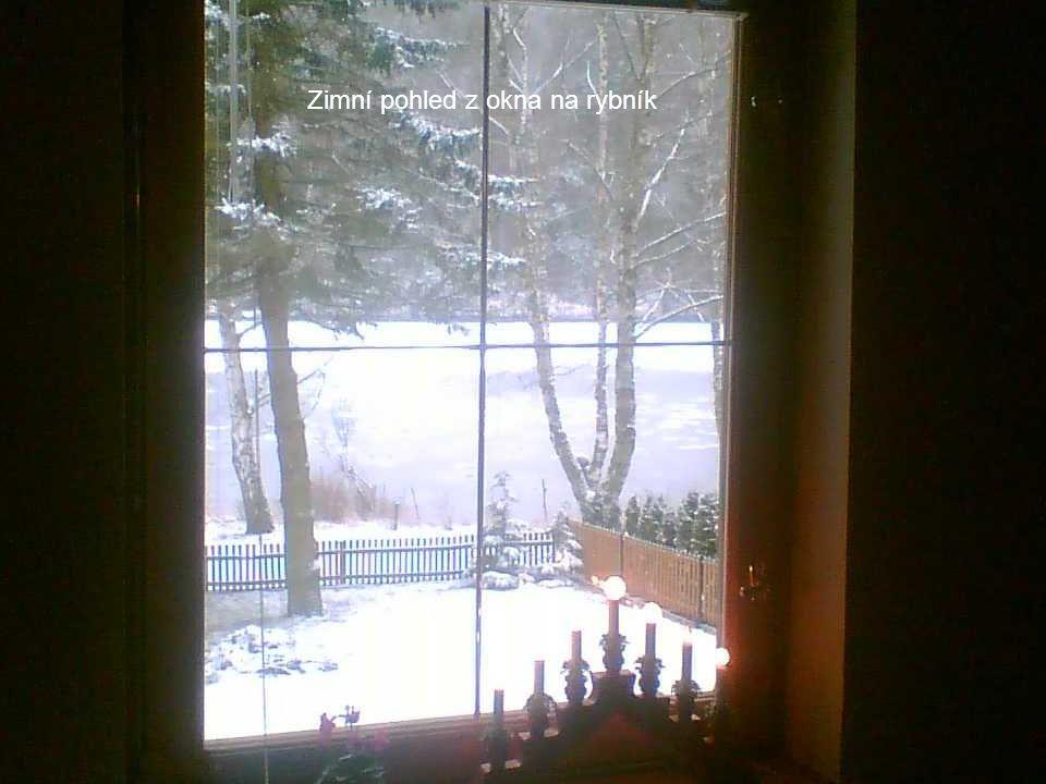 Zimní pohled z okna na rybník